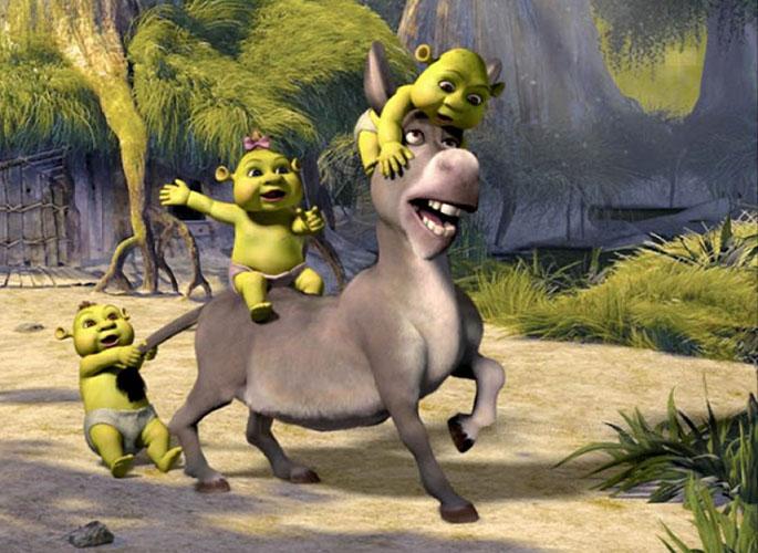 expresión burro origen